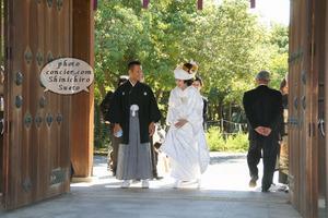 和歌山での神式、ご結婚式