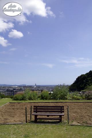 shin-2010-1381.jpg